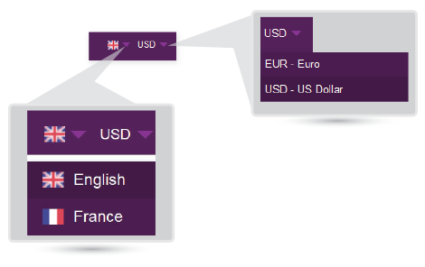 multiple language, currency
