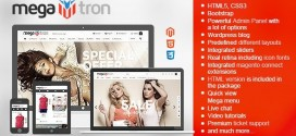 01_megatron_magento.__large_preview